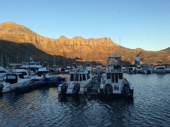 The Lookout Deck Hout Bay Restaurant, Bar & Sushi: Sportsfisher boats