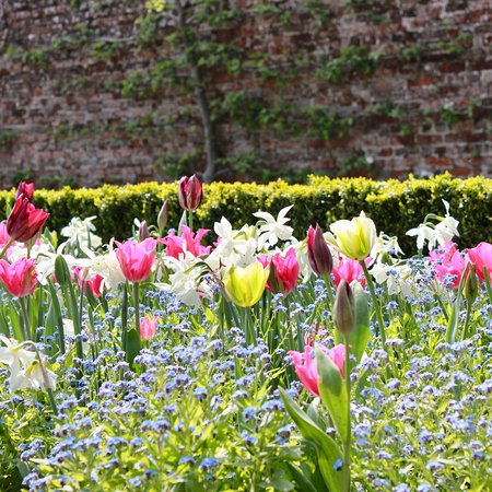 Hinton Ampner, UK: photo8.jpg