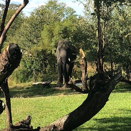 Ilala Lodge Hotel: View from our veranda