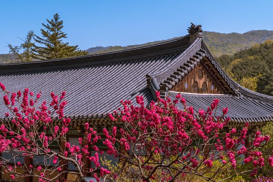 Gimcheon, South Korea: Nice spot for pictures