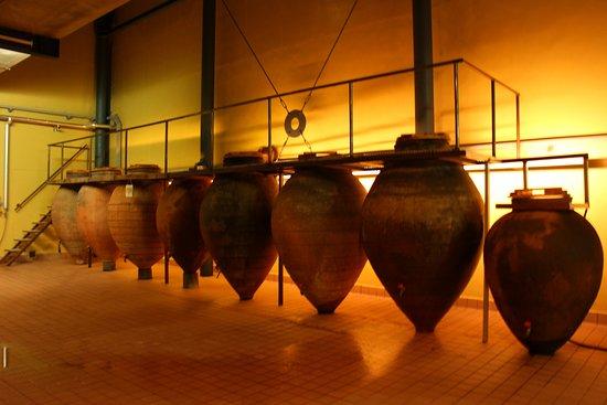Gumiel Del Mercado, إسبانيا: ELABORACION DE VINO METODO TRADICIONAL