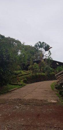 Chachagua, Costa Rica: Finca Luna Nueva