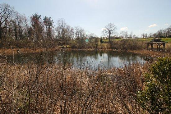 Boylston, แมสซาชูเซตส์: small pond