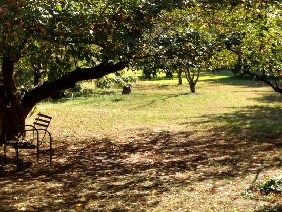 Gualeguay, Argentina: Tranquilidad