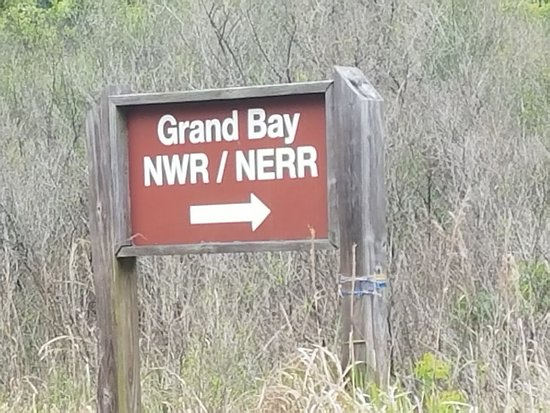 Grand Bay National National Refuge
