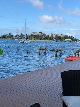 View of Hotel on the Cay from the Christiansted boardwalk.