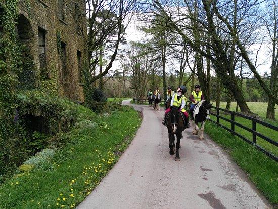 Lee Valley Equestrian Centre: Trekking across the Warrensgrove Estate