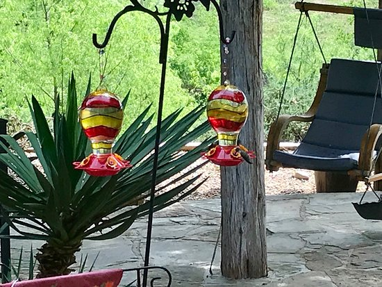Marble Falls, TX: Hummingbirds almost all day long!