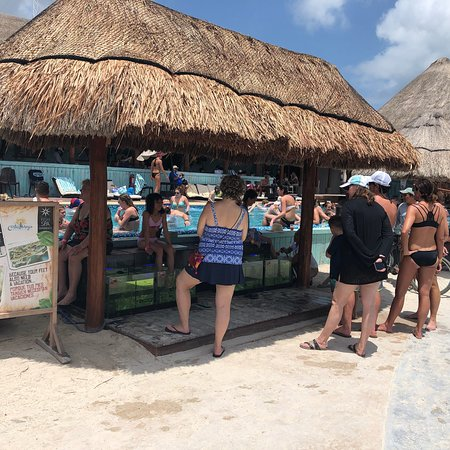 Fish Spa Costa Maya We Are In The Port And At Beach