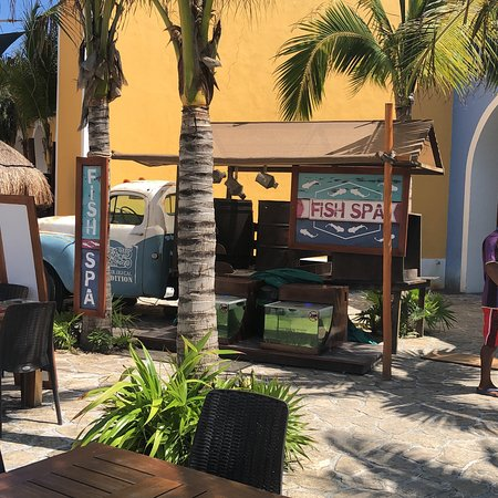 Fish Spa Costa Maya In The Port And At Beach Escape