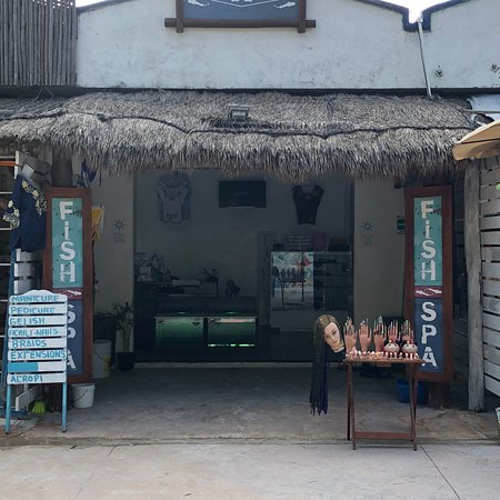 Fish Spa Mahahual