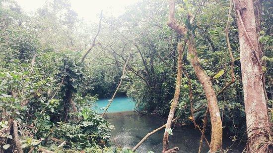 Tenorio Volcano National Park, Costa Rica: IMG_20180427_114155098_large.jpg