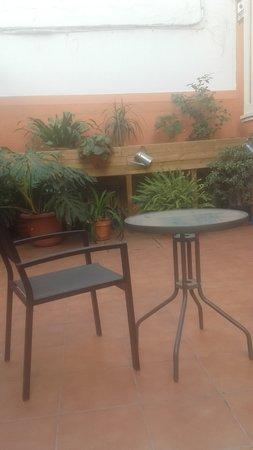 Hostal San Vicente II: Jardin