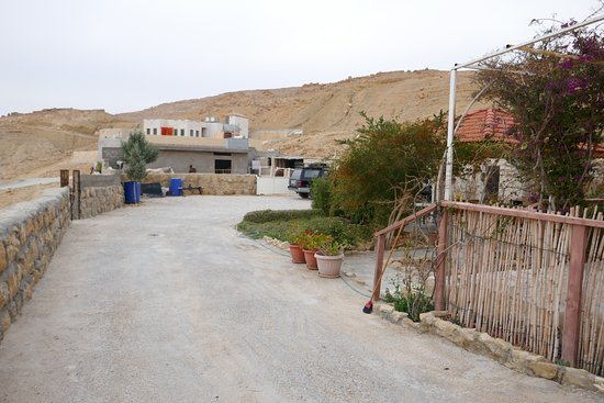 Petra Bed and Breakfast : Entering the property