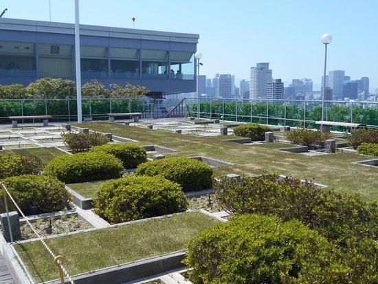 OMM SKy Garden