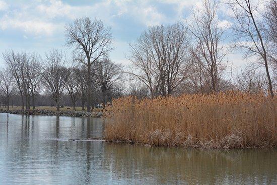 Lake Erie Metropark 사진
