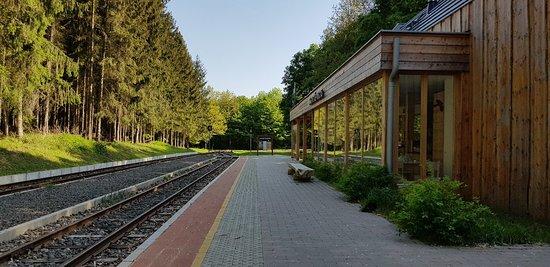 Kospallag, Hungary: 20180428_161156_large.jpg