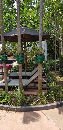 Bunwin Boutique Hotel: Pool area