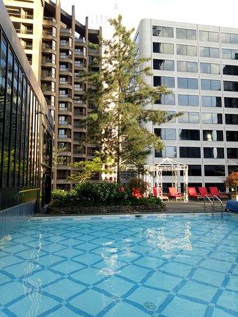 Four Seasons Hotel Vancouver: 半室外半室內泳池與室外花園