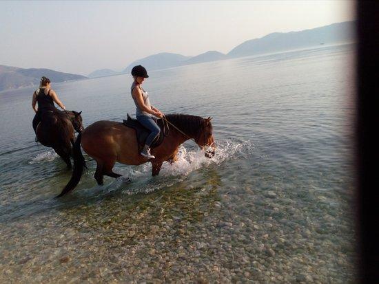 Kefalonia's Horse Riding Stable: riding on Sami beach