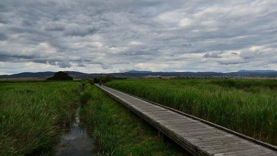 Riverside, Australia: The walkway