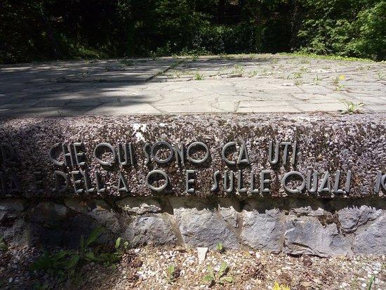 Villa Opicina, Italia: Erbacce, lettere della dedica mancanti.... che vergogna