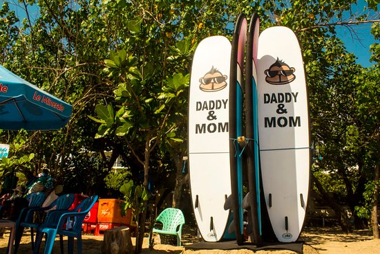 Daddy & Mom Surf School