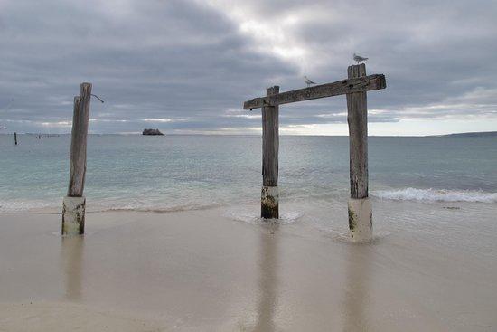 Hamelin Bay صورة فوتوغرافية