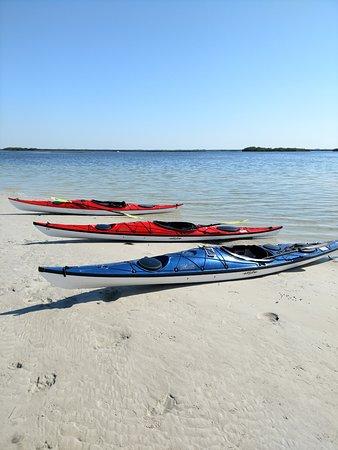 Aardvark's Florida Kayak Company: On a sand bar out in St Martin's Marsh