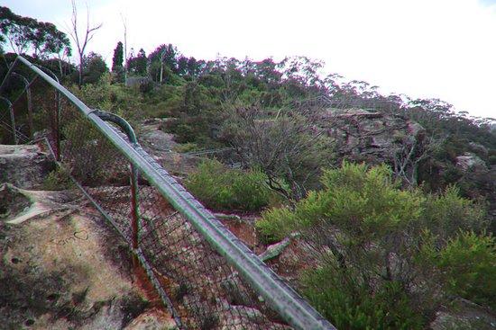 Elysian Rock Lookout张图片