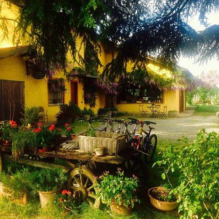 Rocca Grimalda, Italy: photo1.jpg