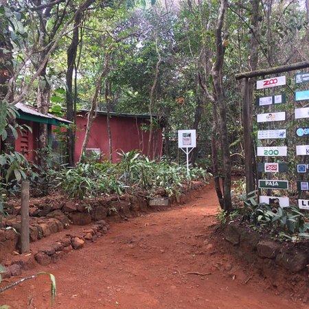 Tacugama Chimpanzee Sanctuary : photo0.jpg