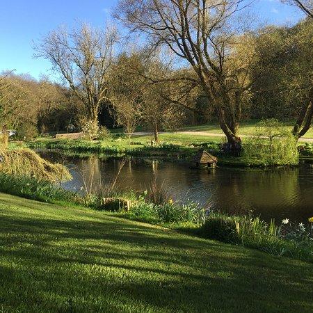 Umberleigh, UK: photo3.jpg