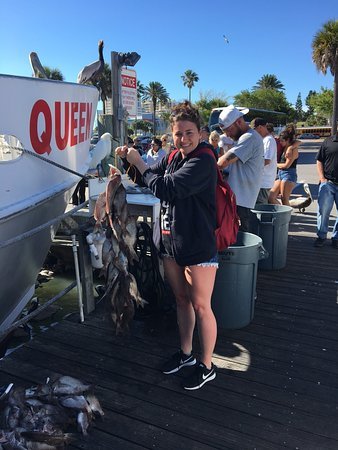 Queen fleet deep sea fishing clearwater fl updated for Queen fleet deep sea fishing clearwater fl