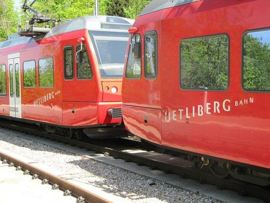 Uetliberg, สวิตเซอร์แลนด์: IMG_6249_large.jpg