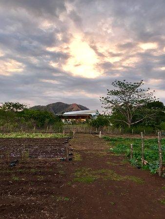 Zdjęcie Santa Rosa