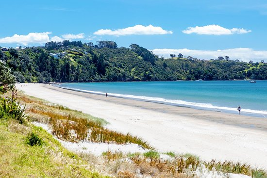 Waiheke Island, Nya Zeeland: We will take you past the most gorgeous beaches for a look included in the tour.
