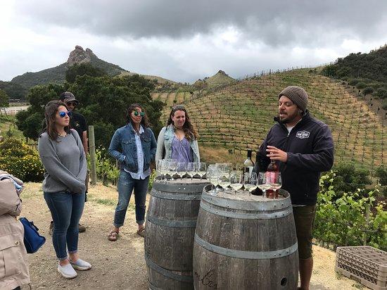 Malibu Wine Safaris Foto