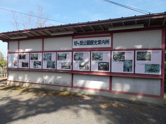 Kashima Foto