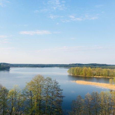 Widok z wieży zegarowej na jezioro Wigry