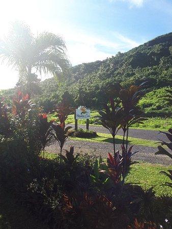 Paradise Cove Lodges: 20180425_085248_large.jpg