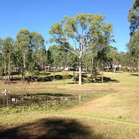 Murgon, Australia: photo4.jpg