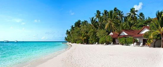 阿沙格岛照片