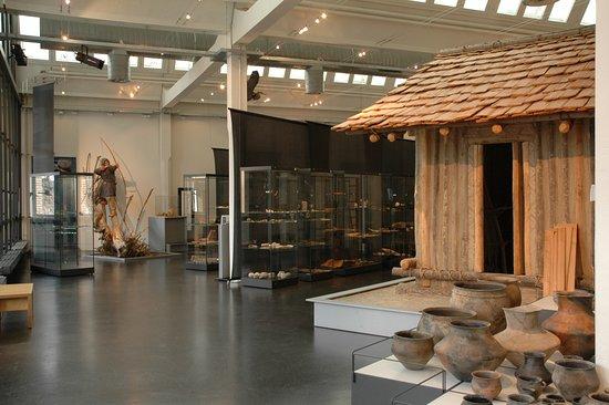 Museum fur Urgeschichte(n)