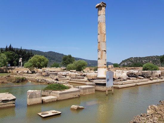 Menderes, Turkey: 20180428_121755_large.jpg