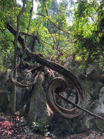 Fei Lai Feng: Viel spass beim Klettern