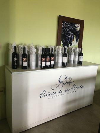 Vinedo de los Vientos: Alguns dos vinhos