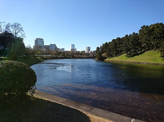 Sakuradabori Hanzobori