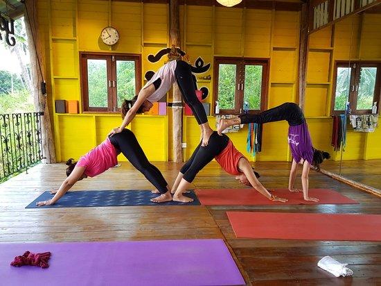 Yoga Essential Studio