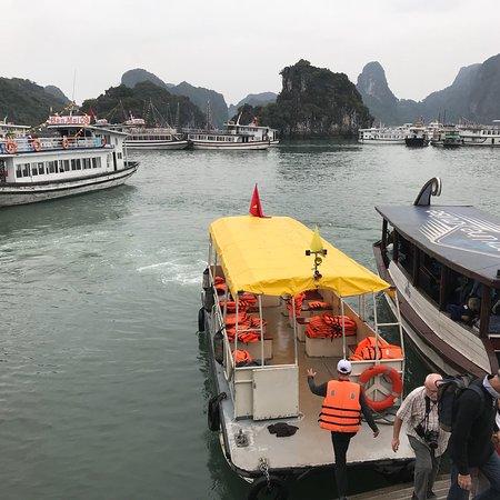 Golden Cruise Foto